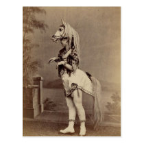 Victorian Horse Costume Daguerreotype/Photo Postcard
