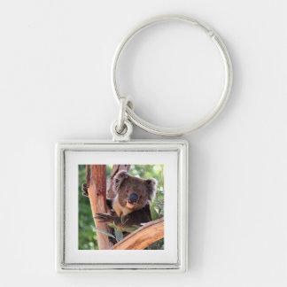 Victorian Koala Keychain