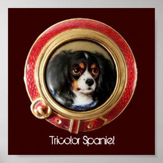 VICTORIAN MINIATURE DOG PORTRAITS Tricolor Spaniel Poster
