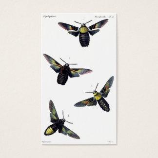Victorian Moths Business Card