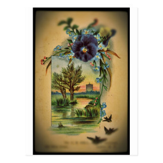 Victorian Pansy Pastoral Postcard
