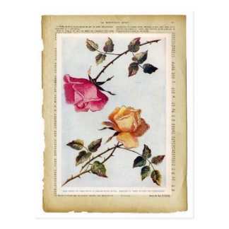 Victorian Pink and Yellow Roses II Postcard