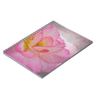 Victorian rosado subió libreta