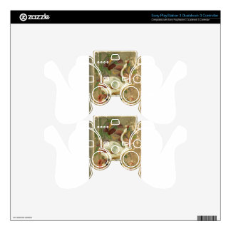 Victorian Rose Floral Book with White Swan PS3 Controller Skin