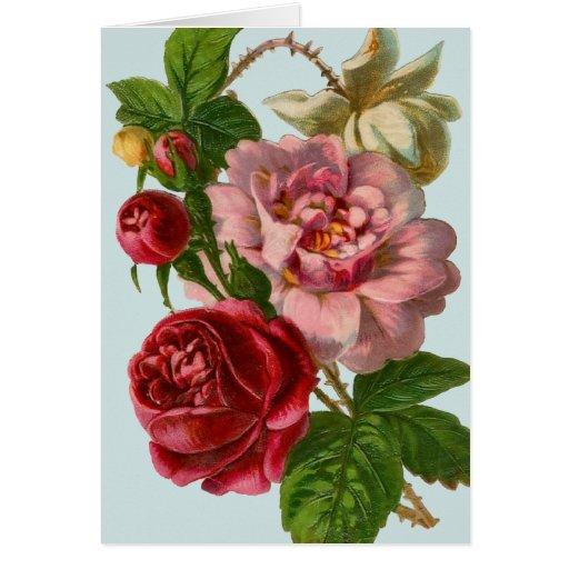 Victorian Rose Illustration Card | Zazzle: www.zazzle.com/victorian_rose_illustration_card-137238454790893155