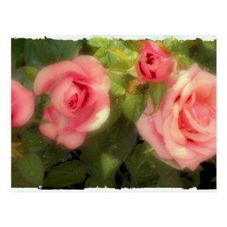 Victorian Rose Postcard