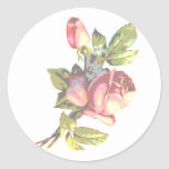 Victorian Rose Transparency Classic Round Sticker