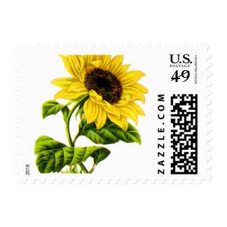 Victorian Sunflower Postage