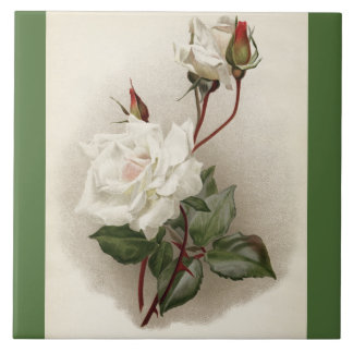 Victorian White Roses Green Ceramic Tile