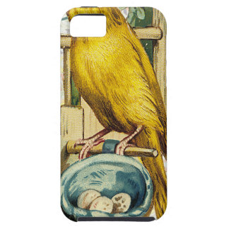 Victorian Yellow Canary Bird Nest iPhone SE/5/5s Case