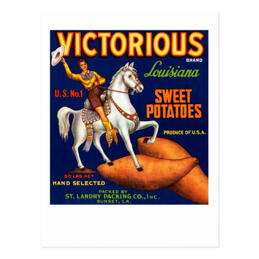 Victorious Brand Louisiana Sweet Potatoes Post Cards