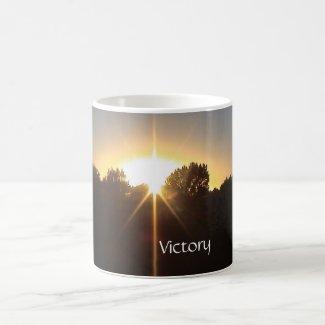 Victory Every Day Mug