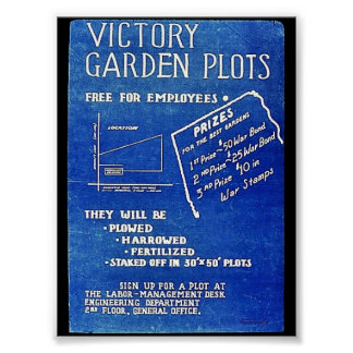 Victory Garden Plots, Free For Employees Poster