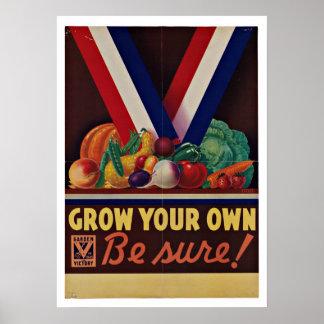 Victory Garden - Vintage Patriotism Poster
