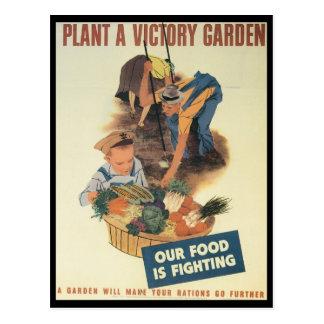 Victory Garden World War 2 Postcard