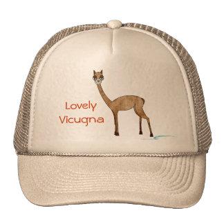 Vicugna Hats