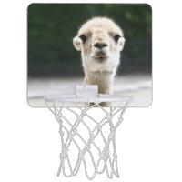 Vicugna Mini Basketball Hoops
