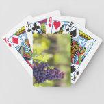 Vid púrpura baraja cartas de poker