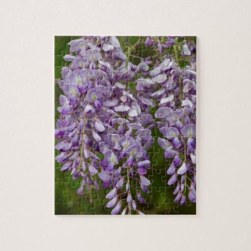 Vid púrpura del Wildflower de las glicinias de la  Rompecabeza