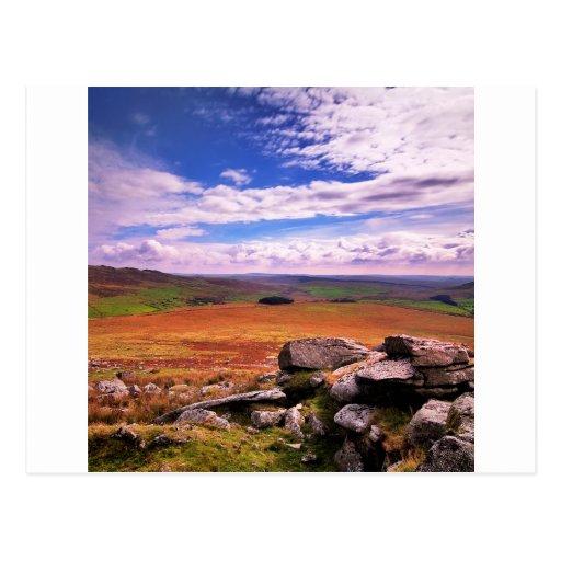 Vida coloreada multi del campo de la naturaleza tarjetas postales