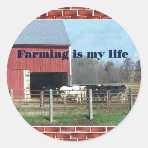 vida de la granja pegatina redonda