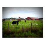 Vida de la granja postal