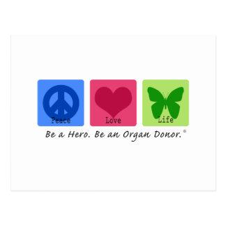 Vida del amor de la paz tarjetas postales