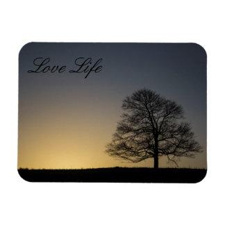 Vida del amor imanes rectangulares