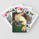 Vida del barro amasado cartas de juego