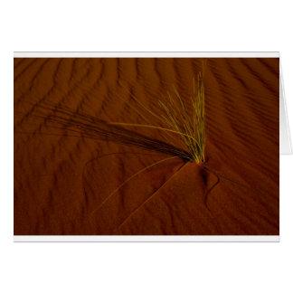Vida del desierto tarjeta de felicitación