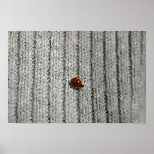 Vida del insecto posters