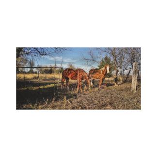 Vida del rancho impresión en tela