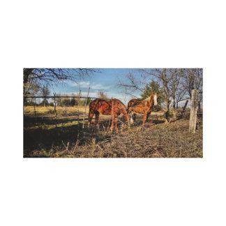 Vida del rancho impresión en lona