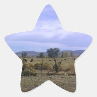 Vida del rancho pegatina en forma de estrella