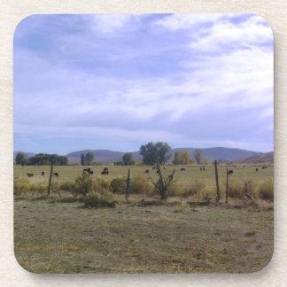 Vida del rancho posavaso