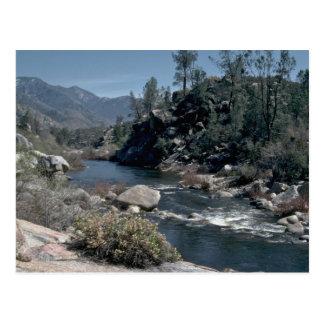 Vida del río tarjetas postales