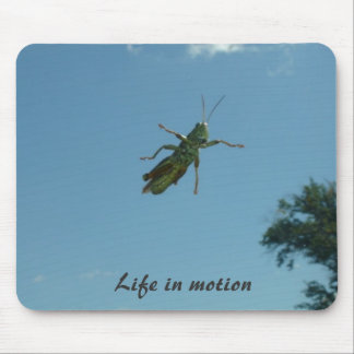 Vida en el movimiento mouse pads