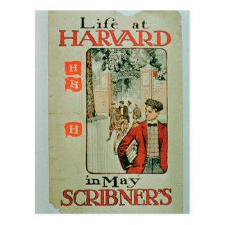 """""""Vida en Harvard"""", publicidad de poster que el Postal"""