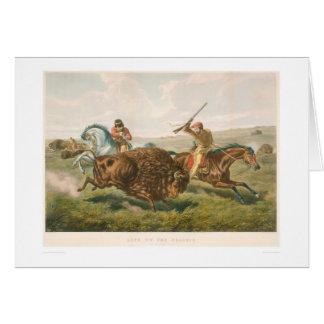Vida en la pradera: La caza del búfalo (0878A) Tarjeta De Felicitación