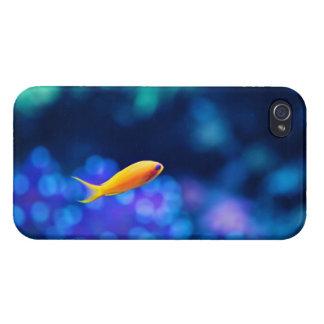 Vida en un cuenco de los pescados iPhone 4 carcasa