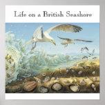 Vida en una costa británica impresiones