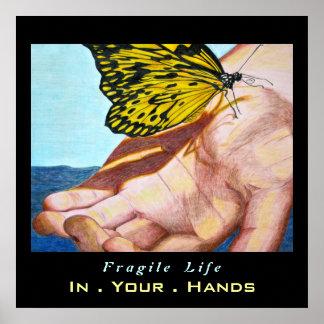 Vida frágil póster