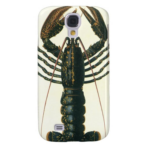 Vida marina crustácea, langosta del océano del vin