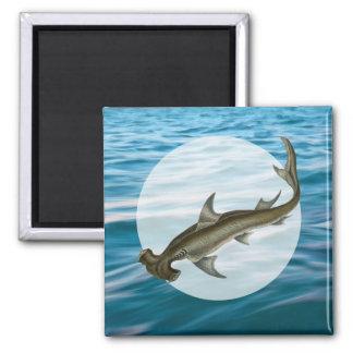 Vida marina del tiburón de Hammerhead Imán Cuadrado