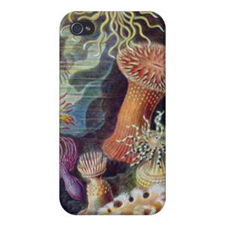 Vida marina del vintage iPhone 4/4S fundas