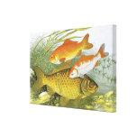 Vida marina marina del vintage, Goldfish acuático Impresion En Lona