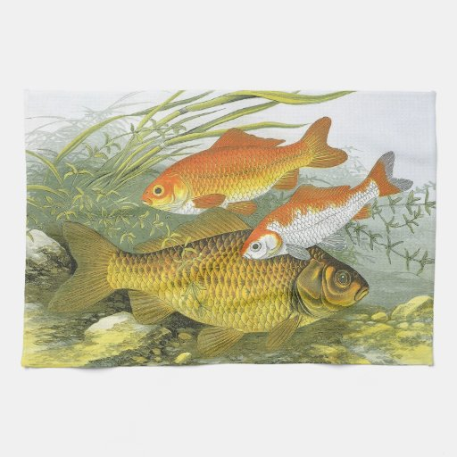 Vida marina marina del vintage, Goldfish acuático Toallas De Mano