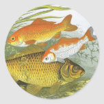 Vida marina marina del vintage, Goldfish acuático Pegatina Redonda