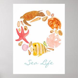 Vida marina poster