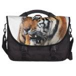 Vida salvaje de los tigres bolsas de portátil